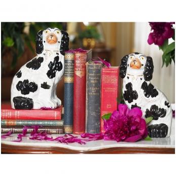 Stafordšyro šunų figūrėlės